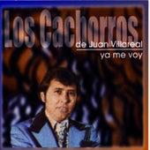 Ya Me Voy by Los Cachorros de Juan Villarreal
