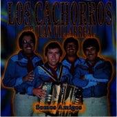 Somos Amigos by Los Cachorros de Juan Villarreal