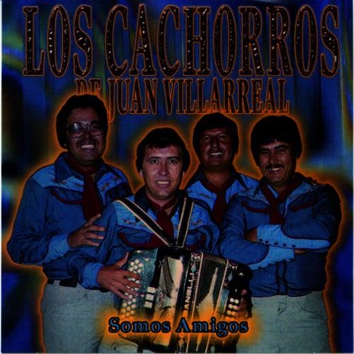 Play & Download Somos Amigos by Los Cachorros de Juan Villarreal | Napster