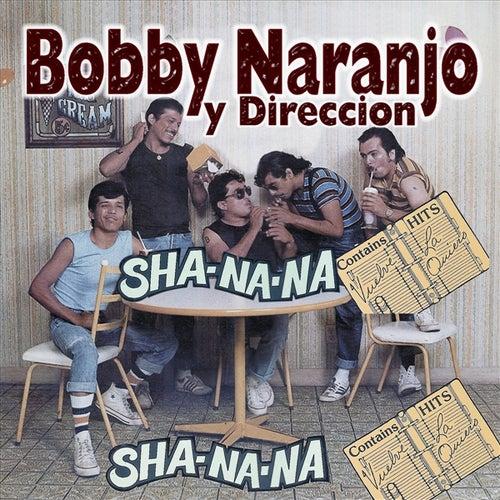 Sha Na Na by Bobby Naranjo