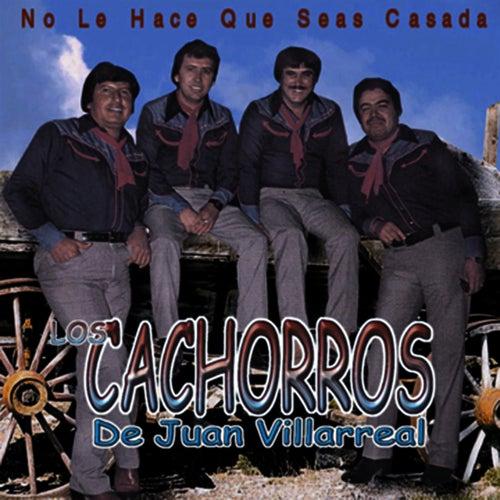 Play & Download No La Hace Que Seas Casada by Los Cachorros de Juan Villarreal | Napster