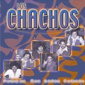 Play & Download Palomas Que Andan Volando by Los Chachos | Napster