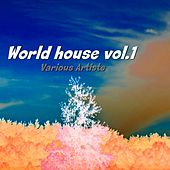 World House, Vol. 1 by Various Artists