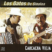 Play & Download Carcacha Vieja by Los Gatos De Sinaloa | Napster
