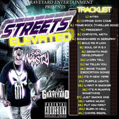 Streets Elevated by Sir Nasty