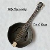 Ditty Boy Twang by Tim O'Brien