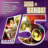 Play & Download ¡viva la Banda! by Various Artists | Napster