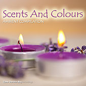 Play & Download Scents and Colours Ambient Compilation by Various Artists | Napster