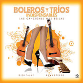 Boleros y Tríos Indispensables: Las Canciones Más Bellas by Various Artists