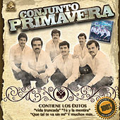Play & Download Vas a Conseguir by Conjunto Primavera | Napster