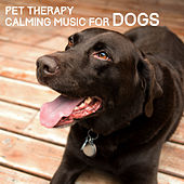 Pet Therapy - Calming Music for Dogs by Various Artists