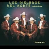Play & Download Volando Alto by Los Rieleros Del Norte | Napster