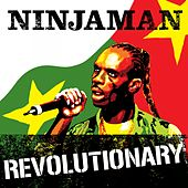 Play & Download Revolutionary by Various Artists | Napster