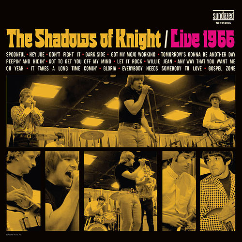 Play & Download Live 1966 by Shadows of Knight | Napster