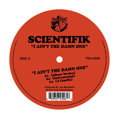 I Ain't The Damn One by Scientifik