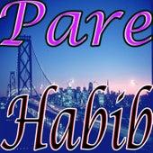 Pare by Habib