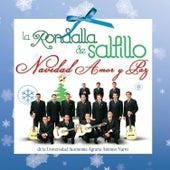 Navidad Amor y Paz by La Rondalla De Saltillo