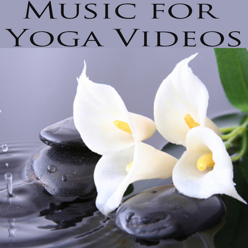 Music for Yoga Videos by David Young