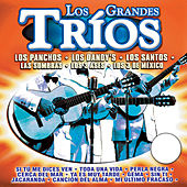 Play & Download Los Grandes Tríos by Various Artists | Napster