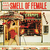 Smell of Female by The Cramps