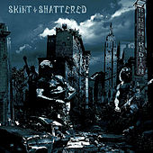 Skint & Shattered by Blue Meridian