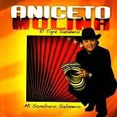 Play & Download Mi Sombrero Sabanero by Aniceto Molina | Napster