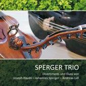 Divertimenti und Duos by Sperger Trio