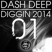 Dash Deep Diggin 2014, Vol. 01 by Various Artists
