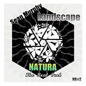 Play & Download Landscape by Sean Murphy | Napster