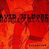 Ritualism by David Gilmore
