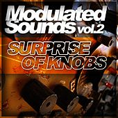 Modulated Sounds, Vol. 2 - Surprise Of Knobs - EP by Various Artists