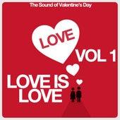 Love Is Vol. 1 (The Sound of Valentine's Day) von Various Artists