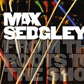 Play & Download From the Roots to the Shoots by Max Sedgley | Napster