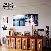 Play & Download Animal Sounds by Grand National | Napster