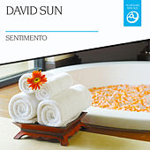 Play & Download Sentimento by David Sun | Napster