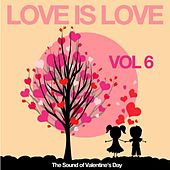 Love Is Love, Vol. 6 (The Sound of Valentine's Day) by Various Artists
