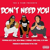 Don't Need You (feat. Kool John, Show Banga, TJ Bridges, Derek King & Lex Aura) - Single by The A-Team