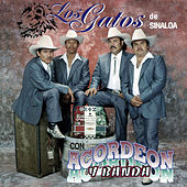 Play & Download Con Acordeon y Banda by Los Gatos De Sinaloa | Napster