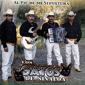 Play & Download Al Pie de Mi Sepultura by Los Gatos De Sinaloa | Napster