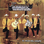 Play & Download El Hijo del Chapo by Los Gatos De Sinaloa | Napster
