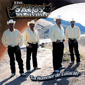 Play & Download La Hummer de Culiacan by Los Gatos De Sinaloa | Napster