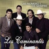 Las Número 1... De Siempre by Los Caminantes
