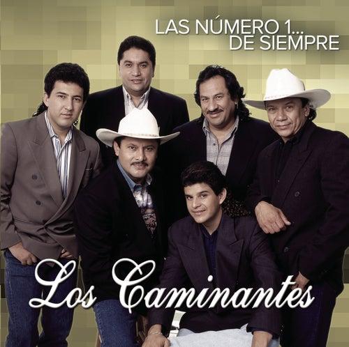 Play & Download Las Número 1... De Siempre by Los Caminantes | Napster