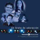 Un Brote De Adoración by Various Artists