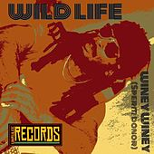 Play & Download Winey Winey Sperm Donor by Wild Life | Napster