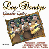 Play & Download Grandes Exitos by Los Dandys | Napster