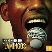 Play & Download The Best of The Flamingos by The Flamingos | Napster