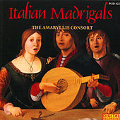 Play & Download Italian Madrigals by The Amaryllis Consort | Napster