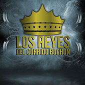 Play & Download Los Reyes del Corrido Buchon by Various Artists | Napster