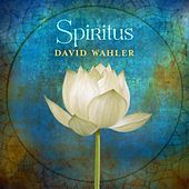 Play & Download Spiritus by David Wahler | Napster
